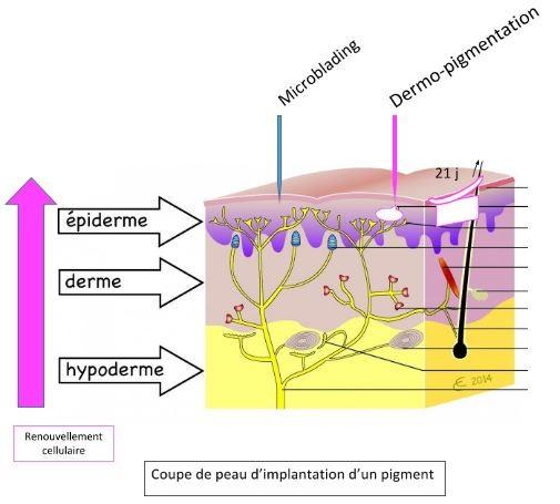 microblading lyon vs dermopigmentation